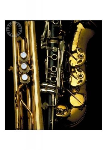 tropette clarinette saxophone